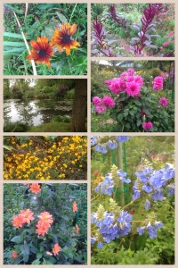 Monet's Gardens - a veritable explosion of color!